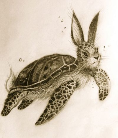 Turtle Rabbit