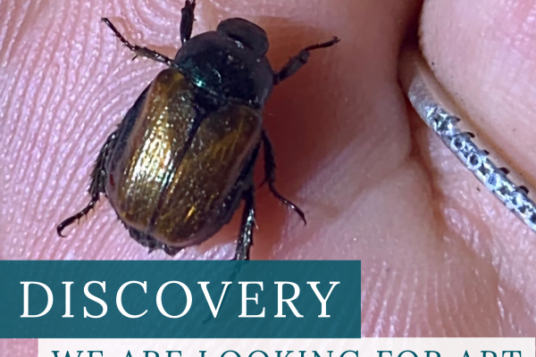 A Call for Artists: Spring 2021 Exhibition: Discovery
