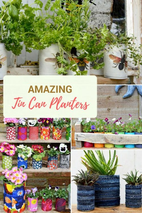 Amazing Tin Can Planters