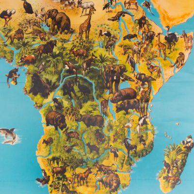 Africa_Animals_School_Chart_detail_1024x1024