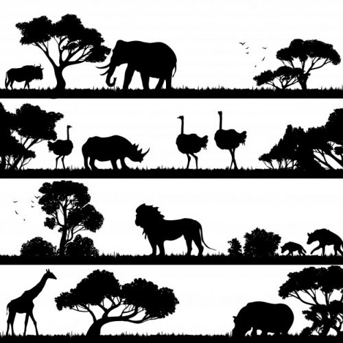 african-landscape-silhouette_98292-734