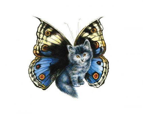 butterfly cat - Séverine PINEAUX