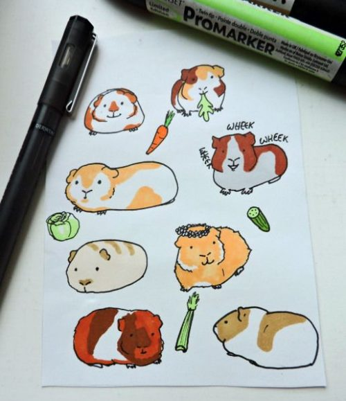 fill a page with guinea pigs